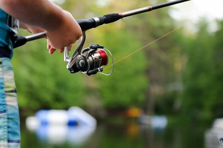 Bass spinning reel