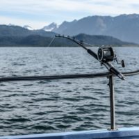 Best Fishing Rod Holders